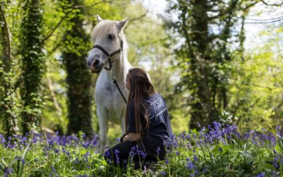 Can horse therapy make you happy?
